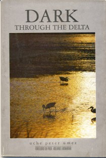 Dark thropugh the Delta, by Uche Peter Umez
