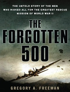Cover Art:  The Forgotten 500
